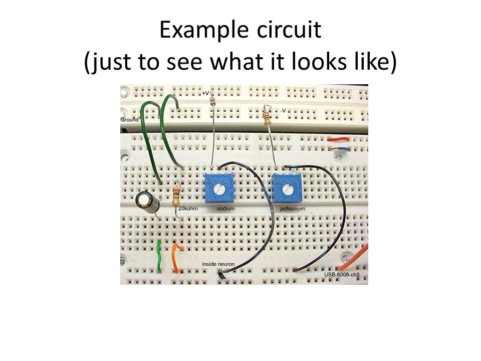 DMM The DMM measures -- voltage -- resistance -- capacitance -- current