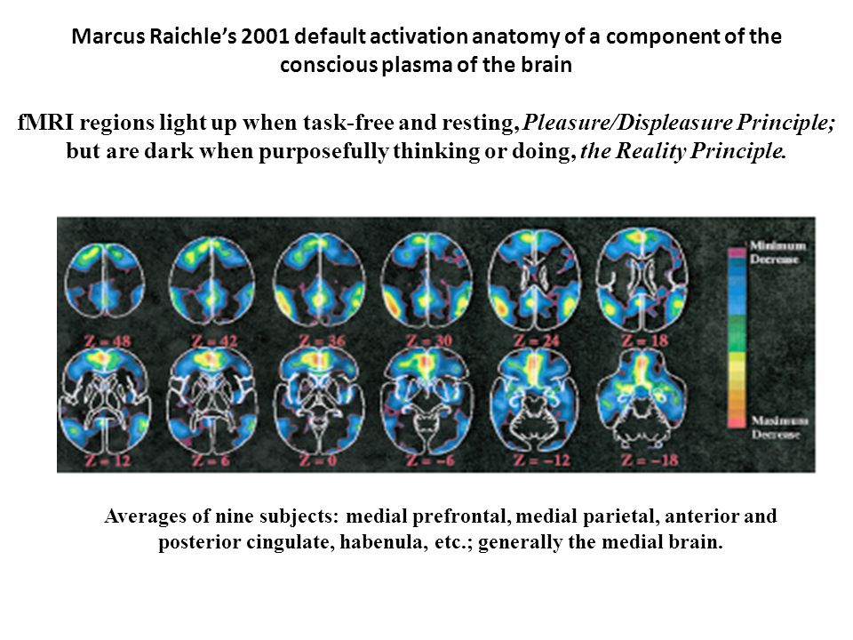 Marcus Raichle's 2001 default activation anatomy of a component of the conscious plasma of the brain fMRI regions light up when task-free and resting, Pleasure/Displeasure Principle; but are dark when purposefully thinking or doing, the Reality Principle.