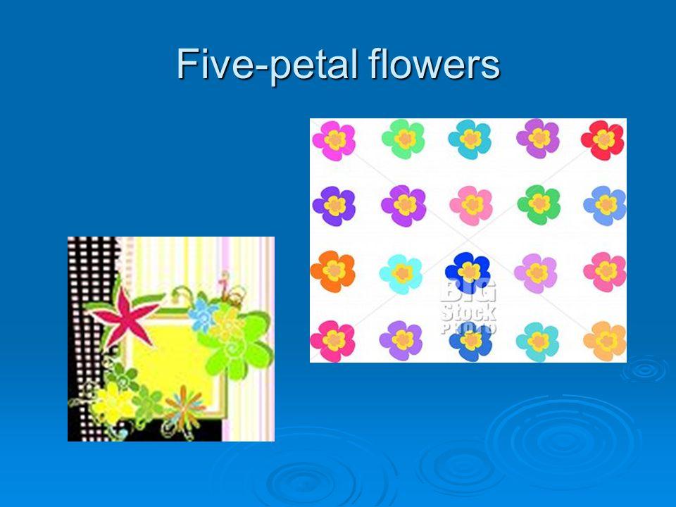 Five-petal flowers