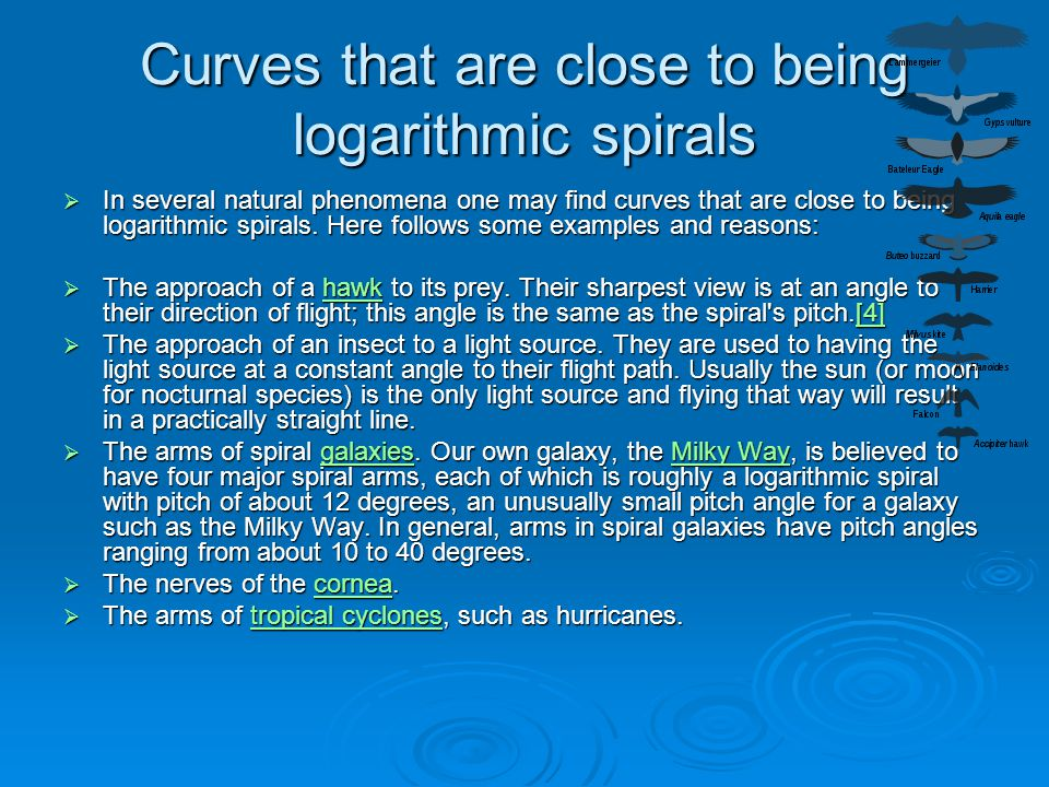 Curves that are close to being logarithmic spirals  In several natural phenomena one may find curves that are close to being logarithmic spirals. Her