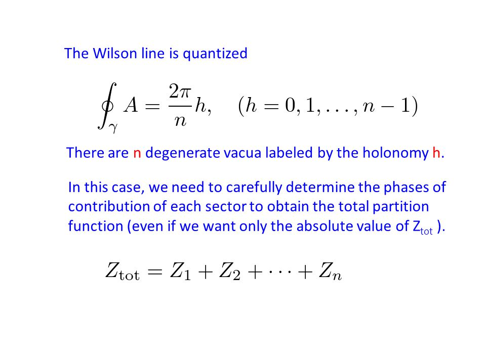 The Wilson line is quantized There are n degenerate vacua labeled by the holonomy h.