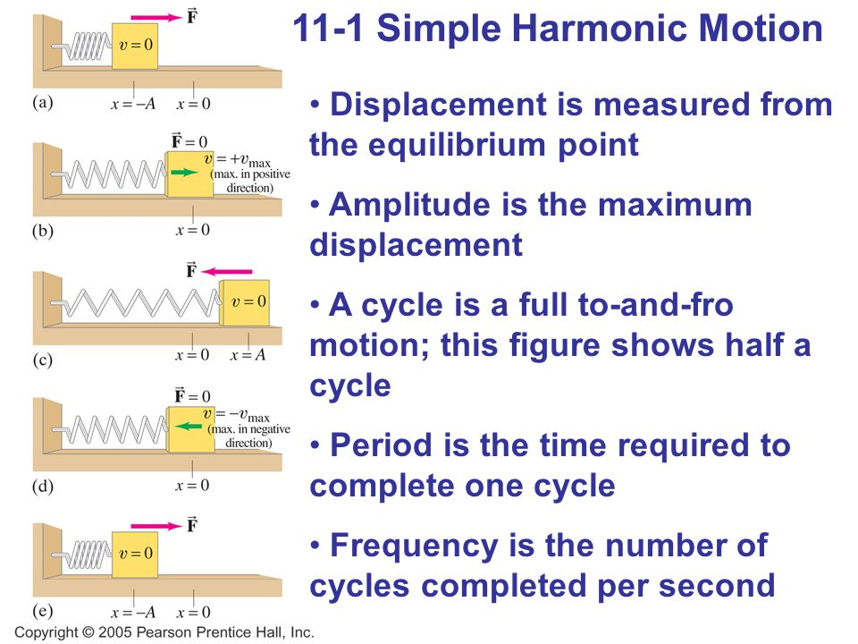 11-1 Simple Harmonic Motion Displacement is measured from the equilibrium point Amplitude is the maximum displacement A cycle is a full to-and-fro motion; this figure shows half a cycle Period is the time required to complete one cycle Frequency is the number of cycles completed per second