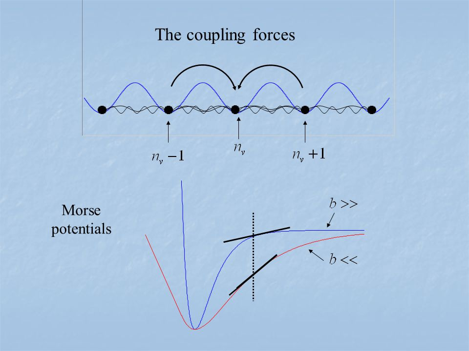 Morse potentials The coupling forces