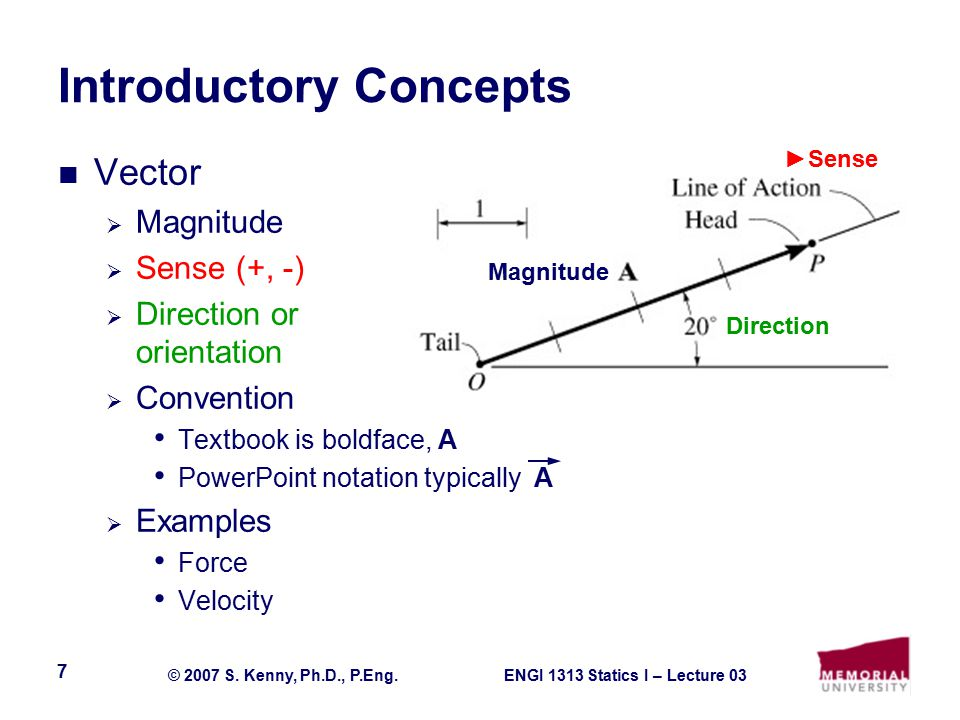 ENGI 1313 Statics I – Lecture 03© 2007 S. Kenny, Ph.D., P.Eng. 18 Applications Lifting Devices