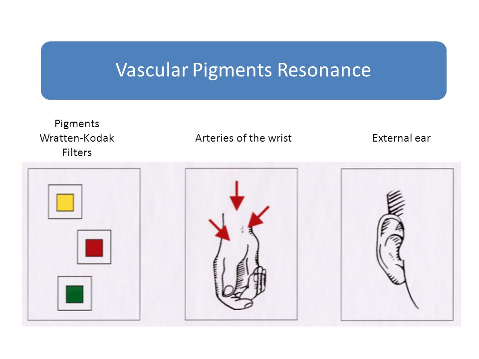 Vascular Pigments Resonance Pigments Wratten-Kodak Filters Arteries of the wristExternal ear