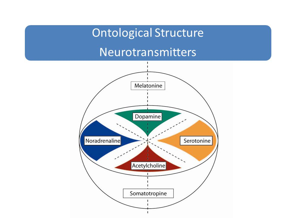 Ontological Structure Neurotransmitters