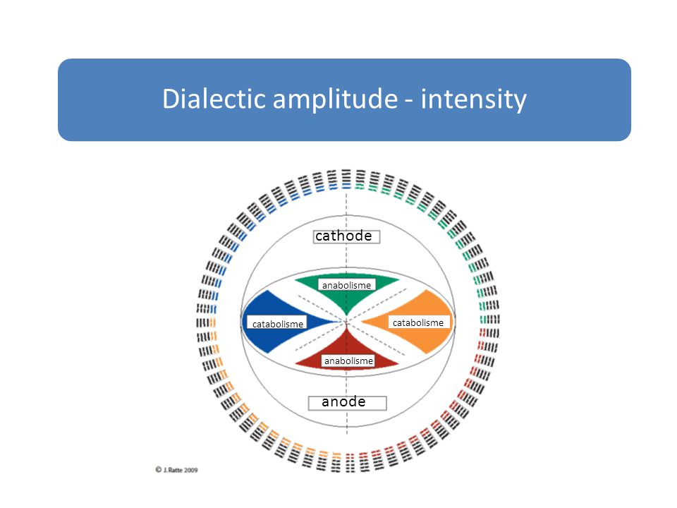 Dialectic amplitude - intensity cathode anode catabolisme anabolisme