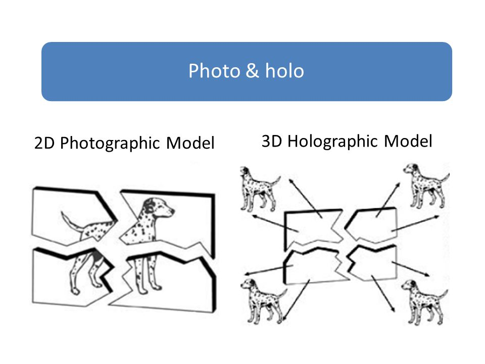 2D Photographic Model Photo & holo 3D Holographic Model