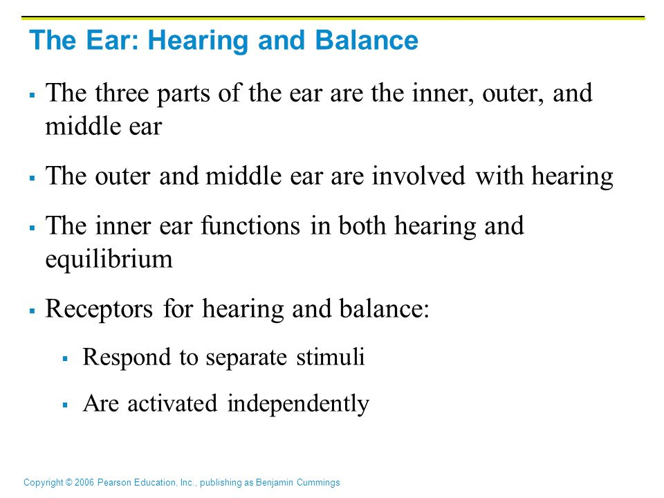 Copyright © 2006 Pearson Education, Inc., publishing as Benjamin Cummings The Ear: Hearing and Balance Figure 15.25a