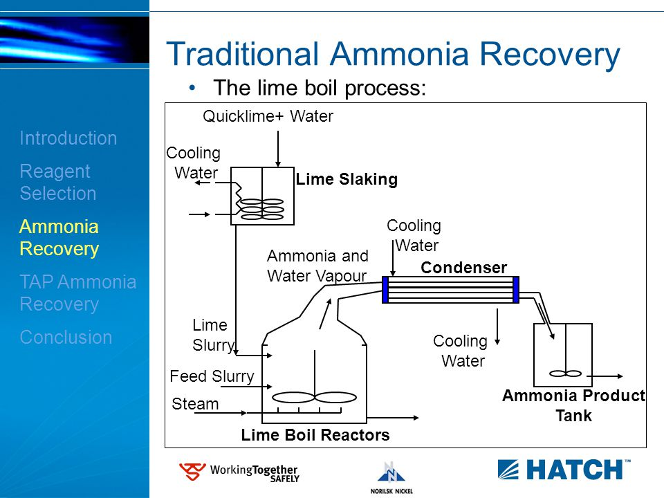 10 Traditional Ammonia Recovery The lime boil process: Introduction Reagent Selection Ammonia Recovery TAP Ammonia Recovery Conclusion Lime Slaking Cooling Water Cooling Water Cooling Water Lime Slurry Feed Slurry Steam Ammonia and Water Vapour Lime Boil Reactors Condenser Ammonia Product Tank Quicklime+ Water