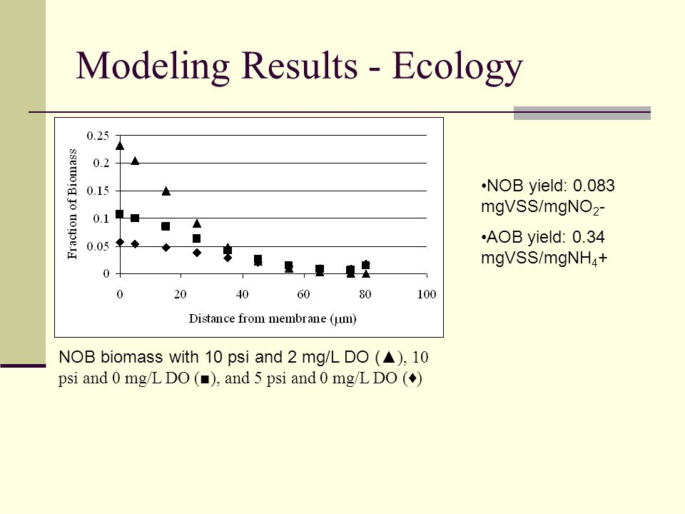 Modeling Results - Ecology NOB biomass with 10 psi and 2 mg/L DO ( ▲), 10 psi and 0 mg/L DO (■), and 5 psi and 0 mg/L DO (♦) NOB yield: 0.083 mgVSS/mgNO 2 - AOB yield: 0.34 mgVSS/mgNH 4 +