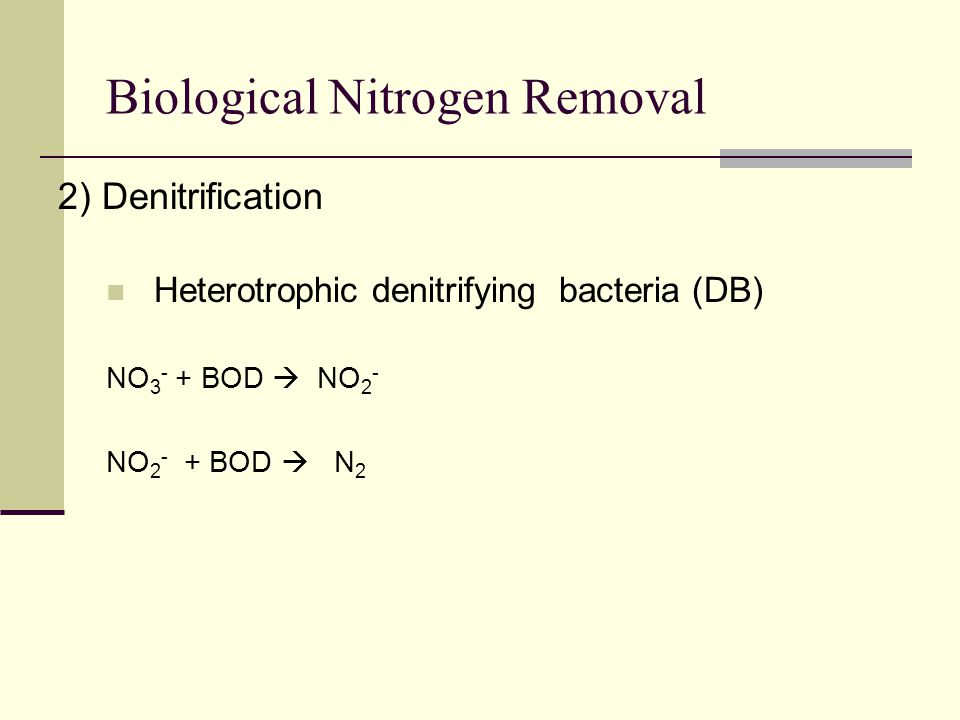 Biological Nitrogen Removal 2) Denitrification Heterotrophic denitrifying bacteria (DB) NO 3 - + BOD  NO 2 - NO 2 - + BOD  N 2