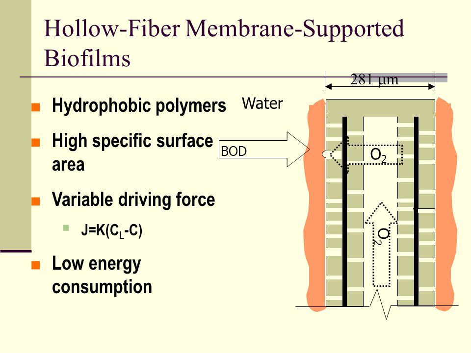 Hollow-Fiber Membrane-Supported Biofilms 281  m 1  m Water O2O2 O2O2 BOD  Hydrophobic polymers  High specific surface area  Variable driving force  J=K(C L -C)  Low energy consumption