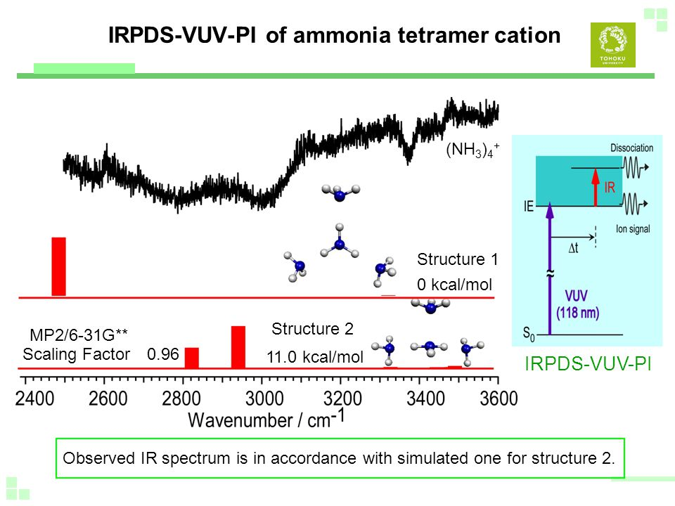 IRPDS-VUV-PI of ammonia tetramer cation Observed IR spectrum is in accordance with simulated one for structure 2.
