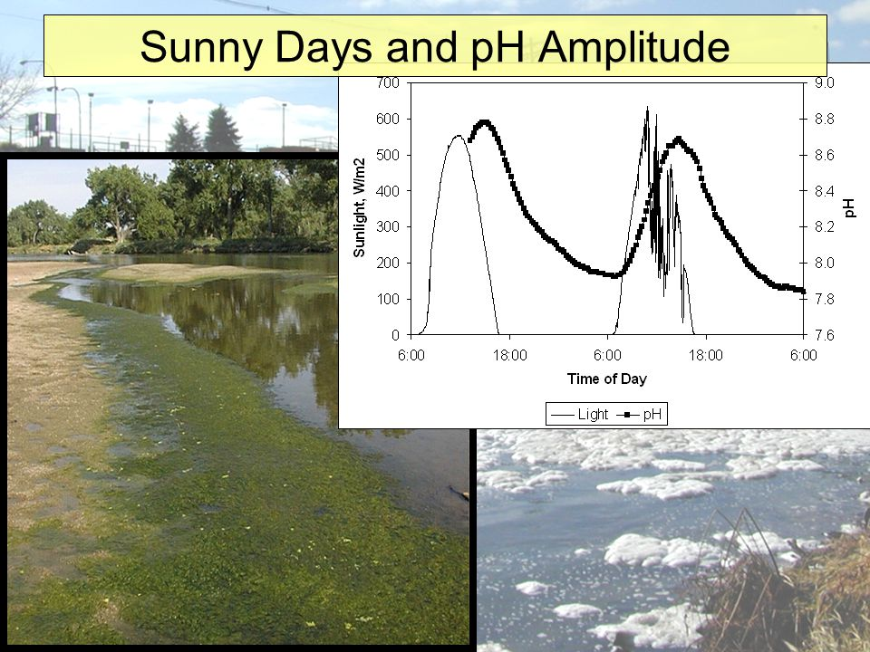 Sunny Days and pH Amplitude