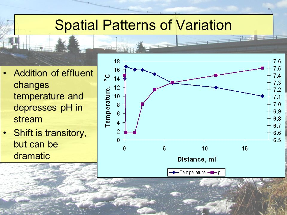 Spatial Patterns of Variation Addition of effluent changes temperature and depresses pH in stream Shift is transitory, but can be dramatic