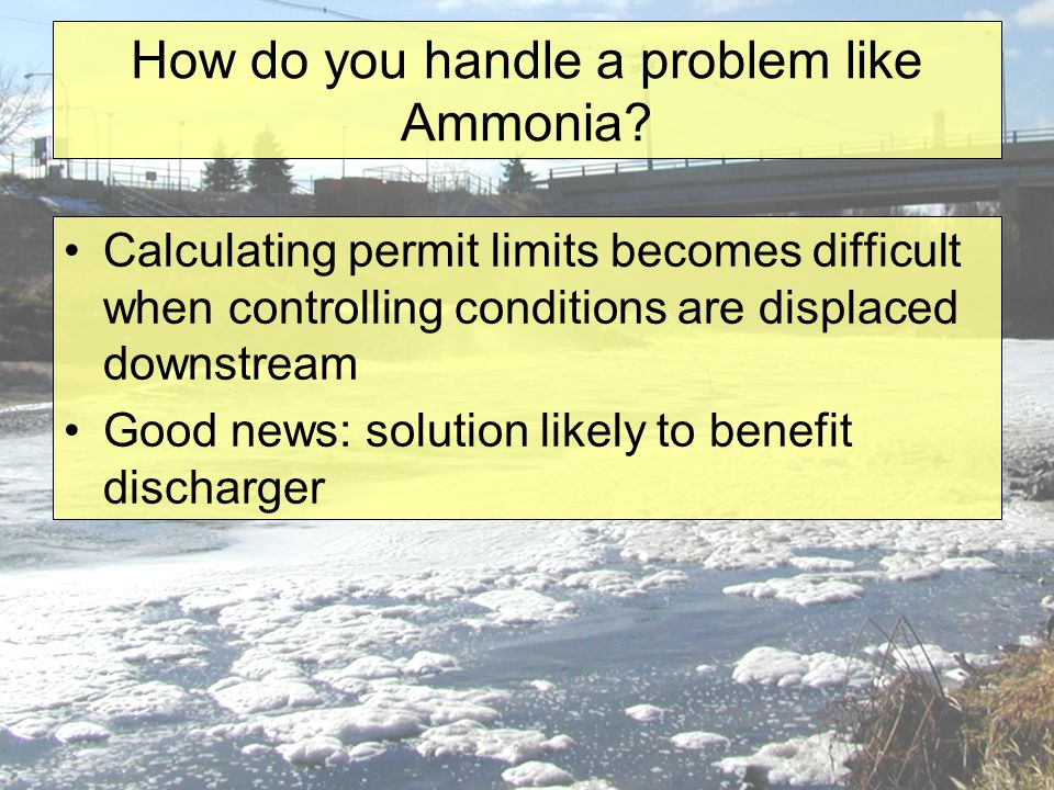 How do you handle a problem like Ammonia.