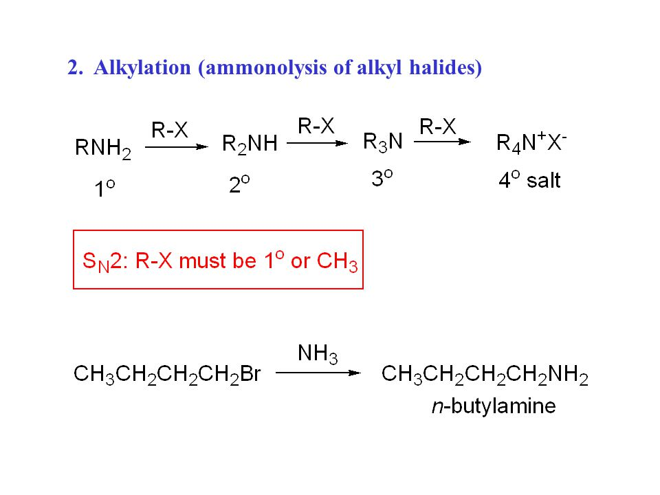 2. Alkylation (ammonolysis of alkyl halides)