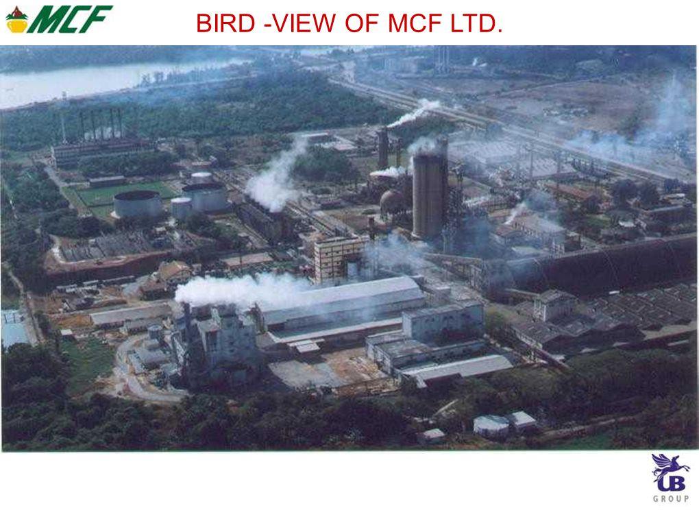 BIRD -VIEW OF MCF LTD.