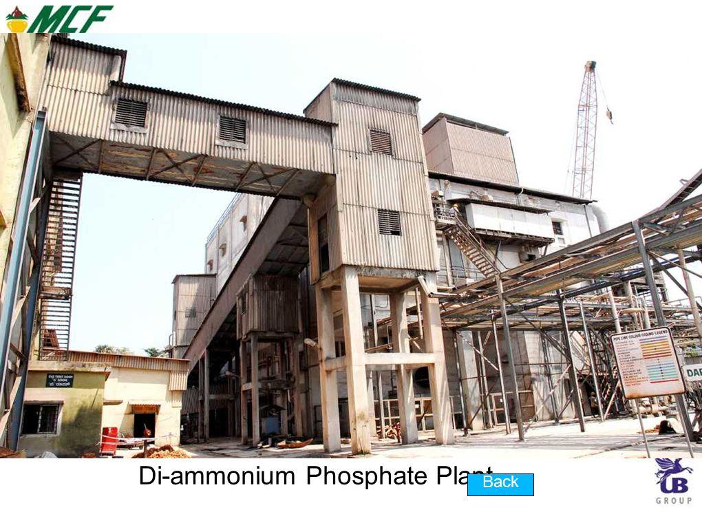Di-ammonium Phosphate Plant Back