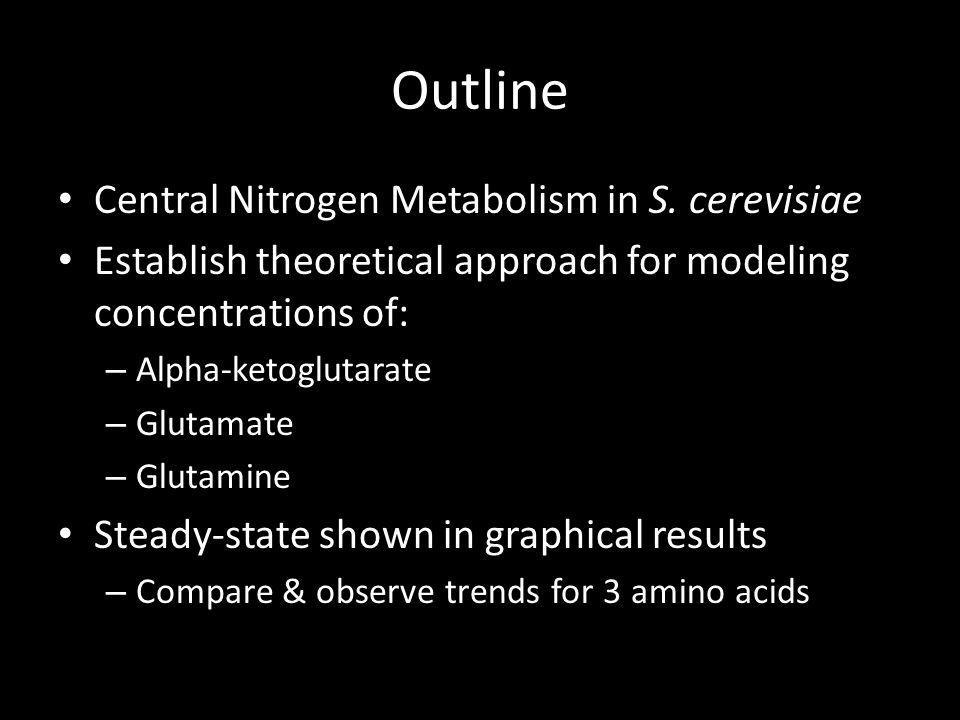 Outline Central Nitrogen Metabolism in S.