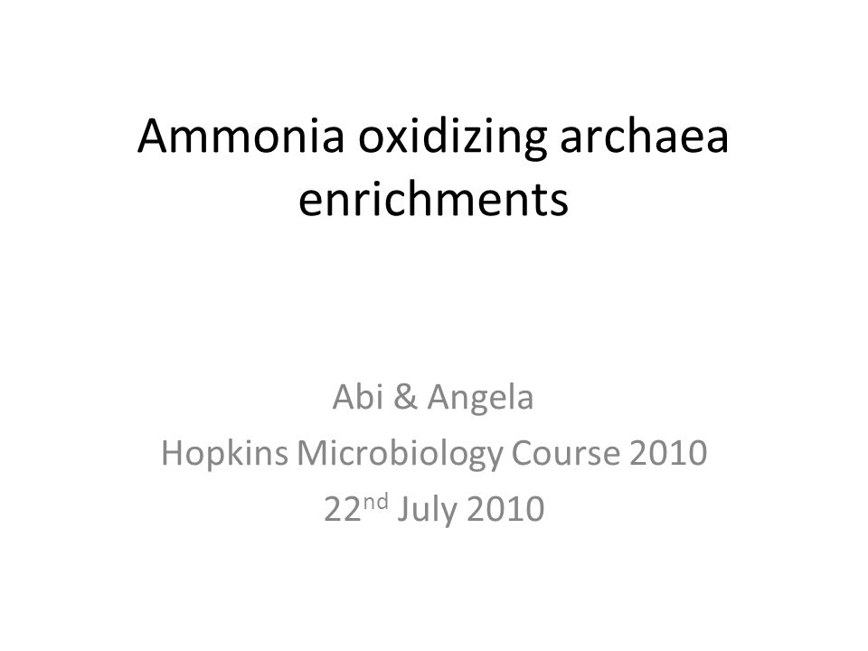 Ammonia oxidizing archaea enrichments Abi & Angela Hopkins Microbiology Course 2010 22 nd July 2010