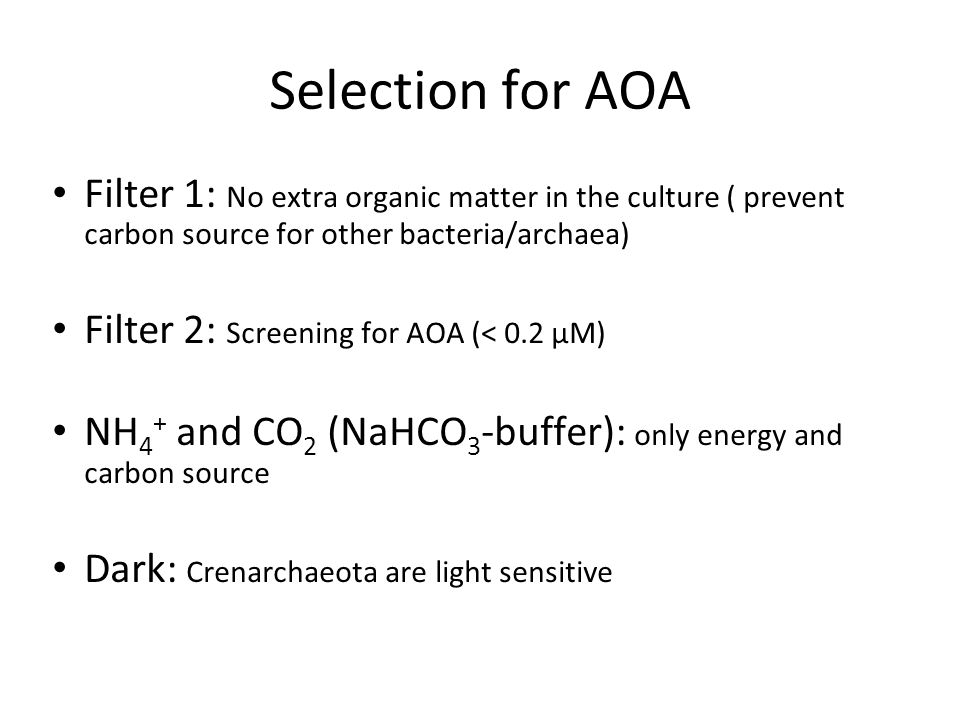 Selection for AOA Filter 1: No extra organic matter in the culture ( prevent carbon source for other bacteria/archaea) Filter 2: Screening for AOA (< 0.2 µM) NH 4 + and CO 2 (NaHCO 3 -buffer): only energy and carbon source Dark: Crenarchaeota are light sensitive