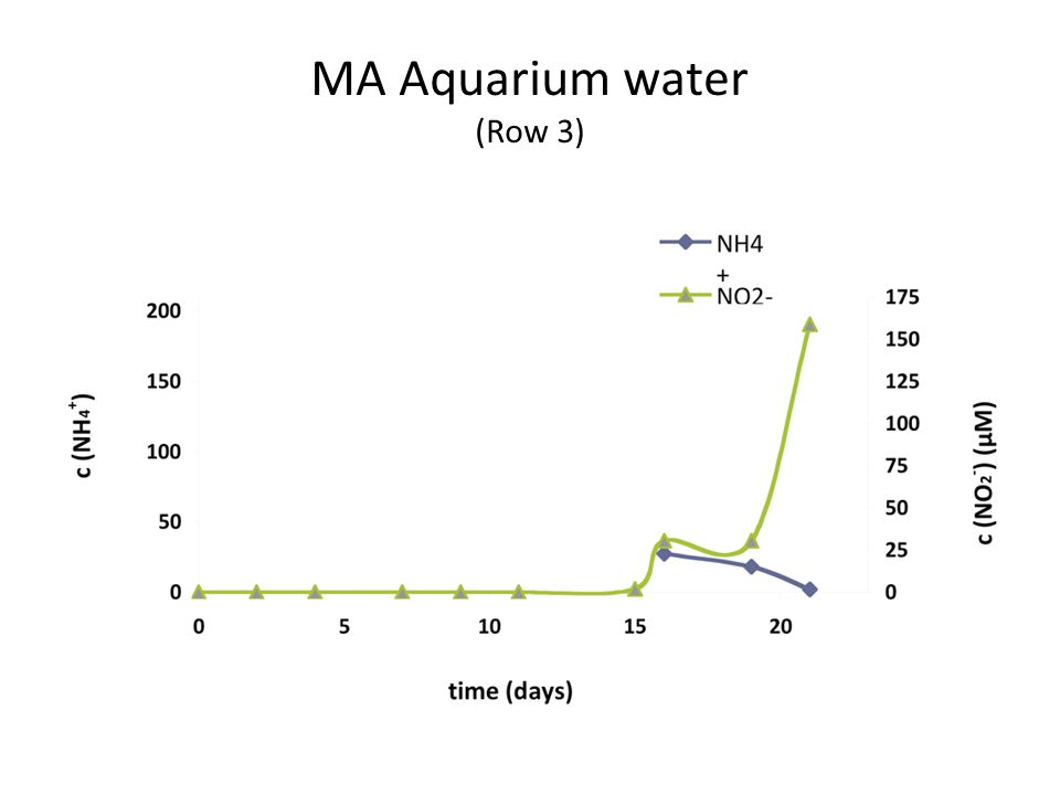 MA Aquarium water (Row 3)