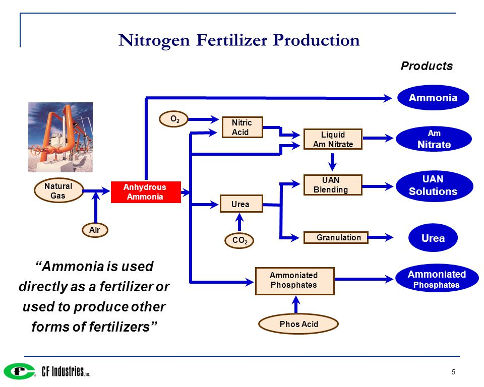 5 Nitrogen Fertilizer Production Nitric Acid Urea CO 2 Liquid Am Nitrate UAN Blending Granulation Ammoniated Phosphates Phos Acid UAN Solutions Urea Ammoniated Phosphates Anhydrous Ammonia Natural Gas Air Ammonia Ammonia is used directly as a fertilizer or used to produce other forms of fertilizers Products Am Nitrate O2O2