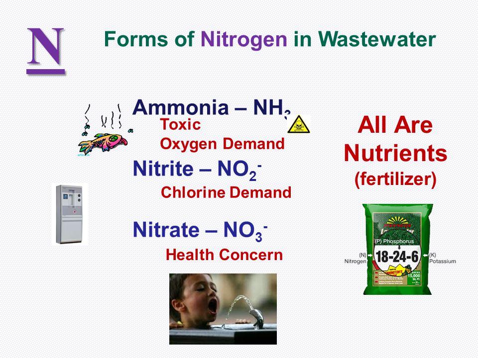 Ammonia – NH 3 Nitrite – NO 2 - Nitrate – NO 3 - N Forms of Nitrogen in Wastewater Toxic Oxygen Demand Chlorine Demand Health Concern All Are Nutrients (fertilizer)