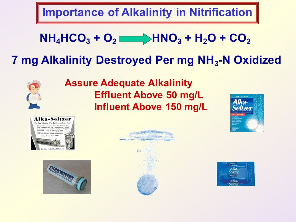 Importance of Alkalinity in Nitrification NH 4 HCO 3 + O 2 HNO 3 + H 2 O + CO 2 7 mg Alkalinity Destroyed Per mg NH 3 -N Oxidized Assure Adequate Alkalinity Effluent Above 50 mg/L Influent Above 150 mg/L