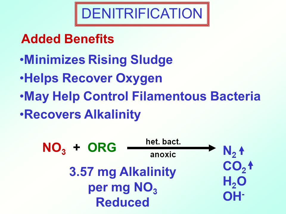 Added Benefits Minimizes Rising Sludge Helps Recover Oxygen May Help Control Filamentous Bacteria Recovers Alkalinity anoxic NO 3 + ORG het.