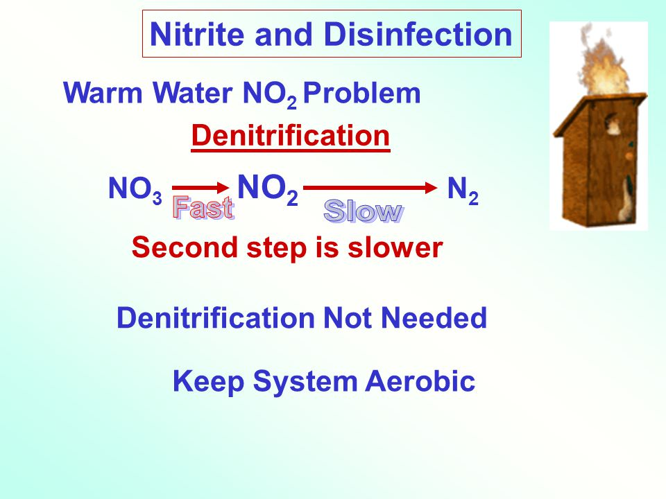 Nitrite and Disinfection Warm Water NO 2 Problem Denitrification NO 3 NO 2 N 2 Second step is slower Keep System Aerobic Denitrification Not Needed
