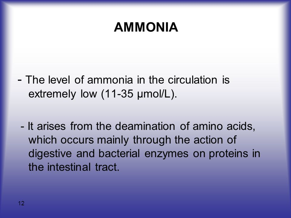 12 AMMONIA - The level of ammonia in the circulation is extremely low (11-35 µmol/L).