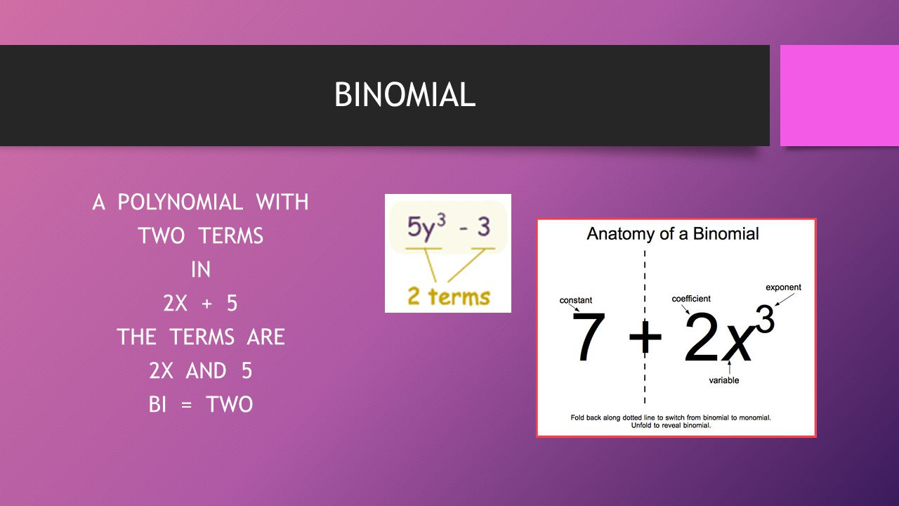 BINOMIAL A POLYNOMIAL WITH TWO TERMS IN 2X + 5 THE TERMS ARE 2X AND 5 BI = TWO