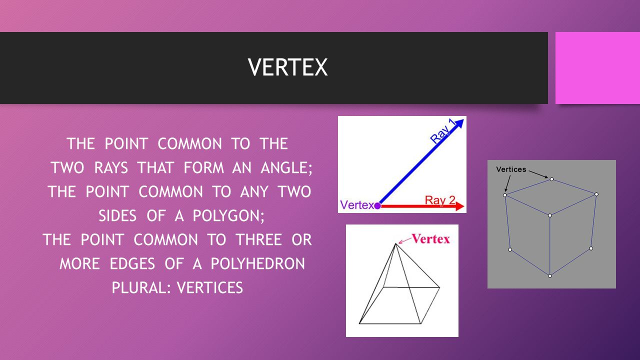 VERTEX THE POINT COMMON TO THE TWO RAYS THAT FORM AN ANGLE; THE POINT COMMON TO ANY TWO SIDES OF A POLYGON; THE POINT COMMON TO THREE OR MORE EDGES OF
