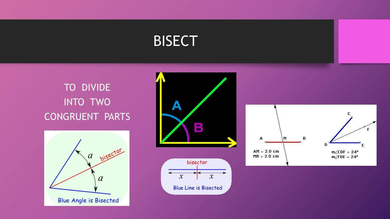 BISECT TO DIVIDE INTO TWO CONGRUENT PARTS
