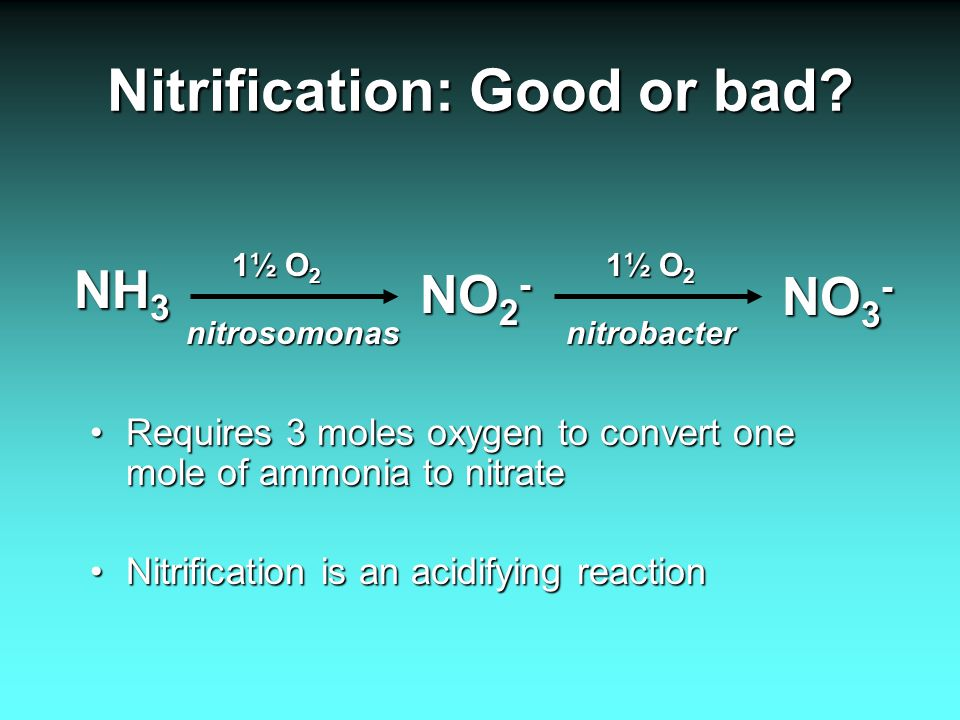 Nitrification: Good or bad.