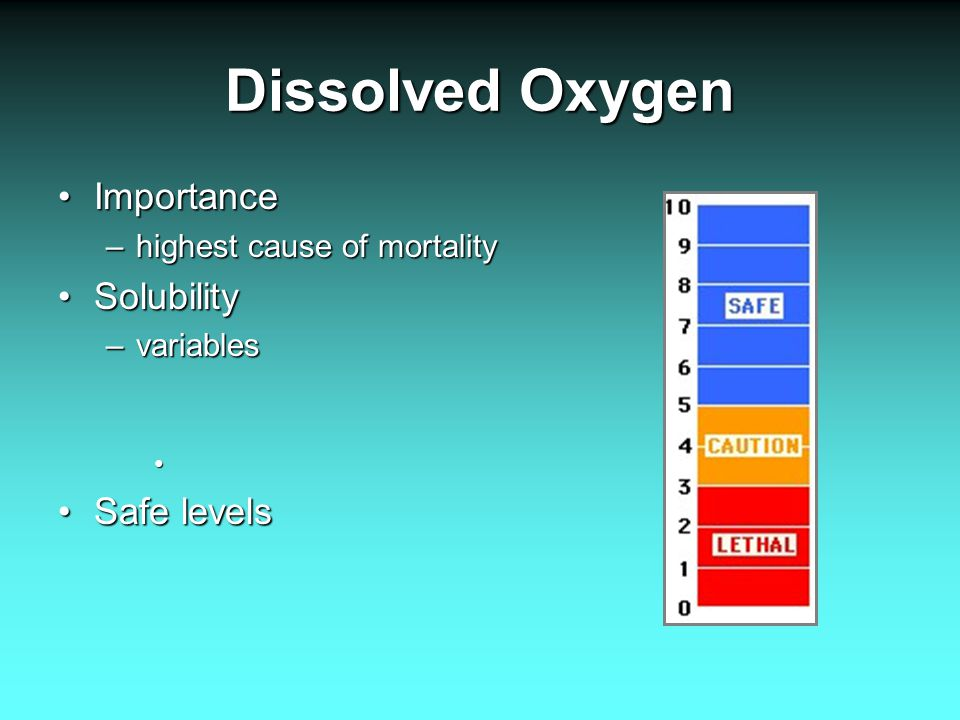 Dissolved Oxygen ImportanceImportance –highest cause of mortality SolubilitySolubility –variables Safe levelsSafe levels