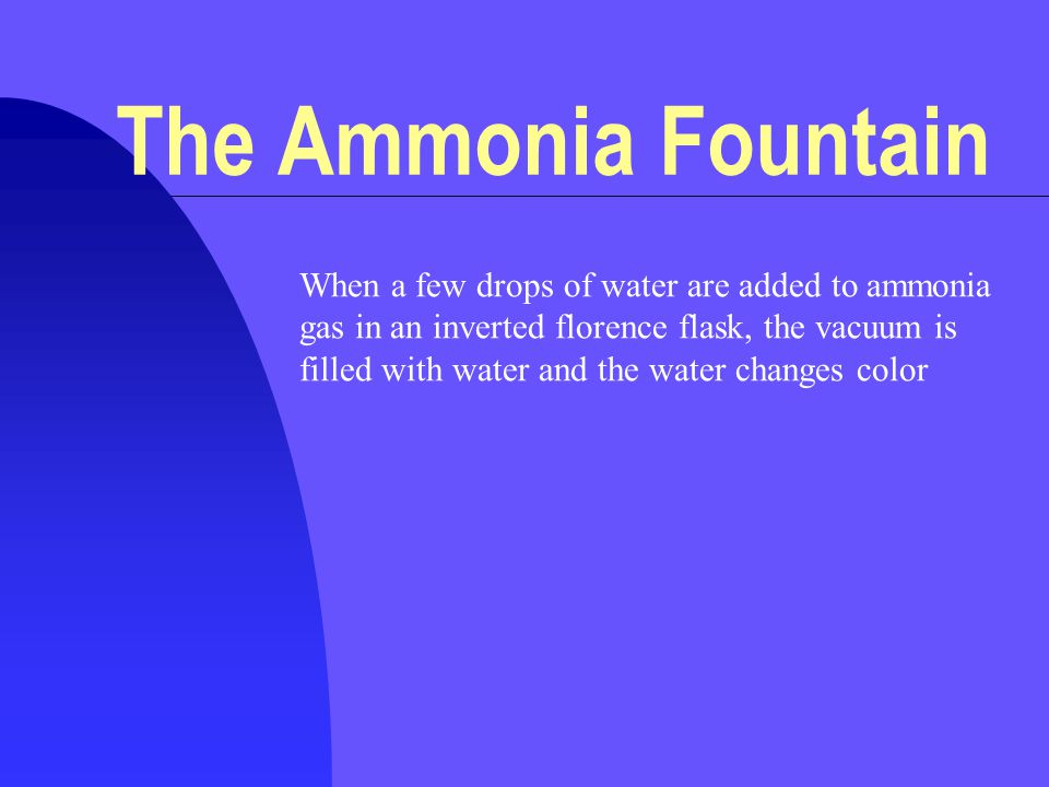 When a few drops of water are added to ammonia gas in an inverted florence flask, the vacuum is filled with water and the water changes color The Ammonia Fountain
