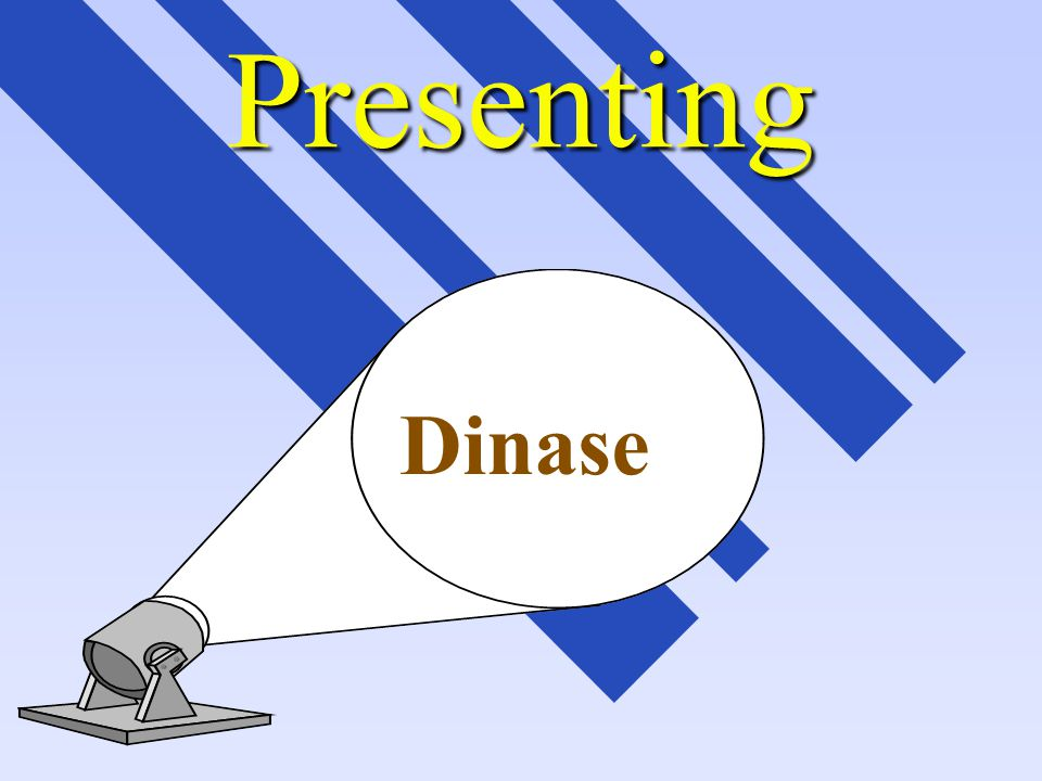 THE MOST COMMON QUESTIONS AND ANSWERS RELATED TO DINASE DINATEC INC.