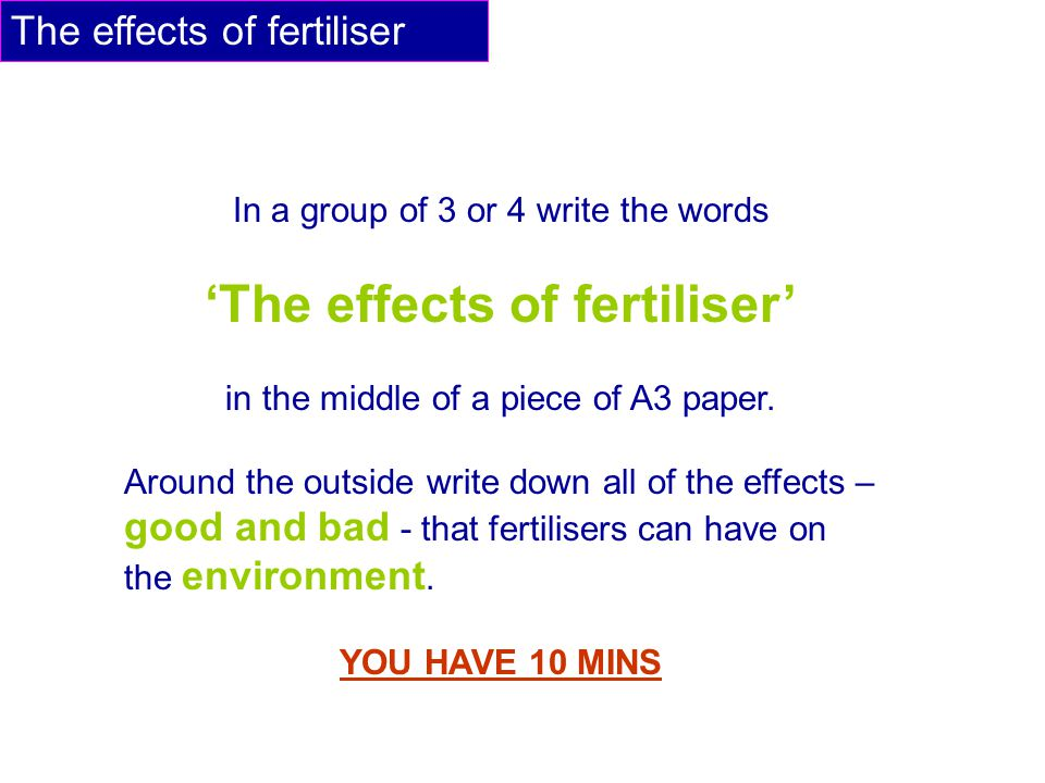The effects of fertiliser In a group of 3 or 4 write the words 'The effects of fertiliser' in the middle of a piece of A3 paper.