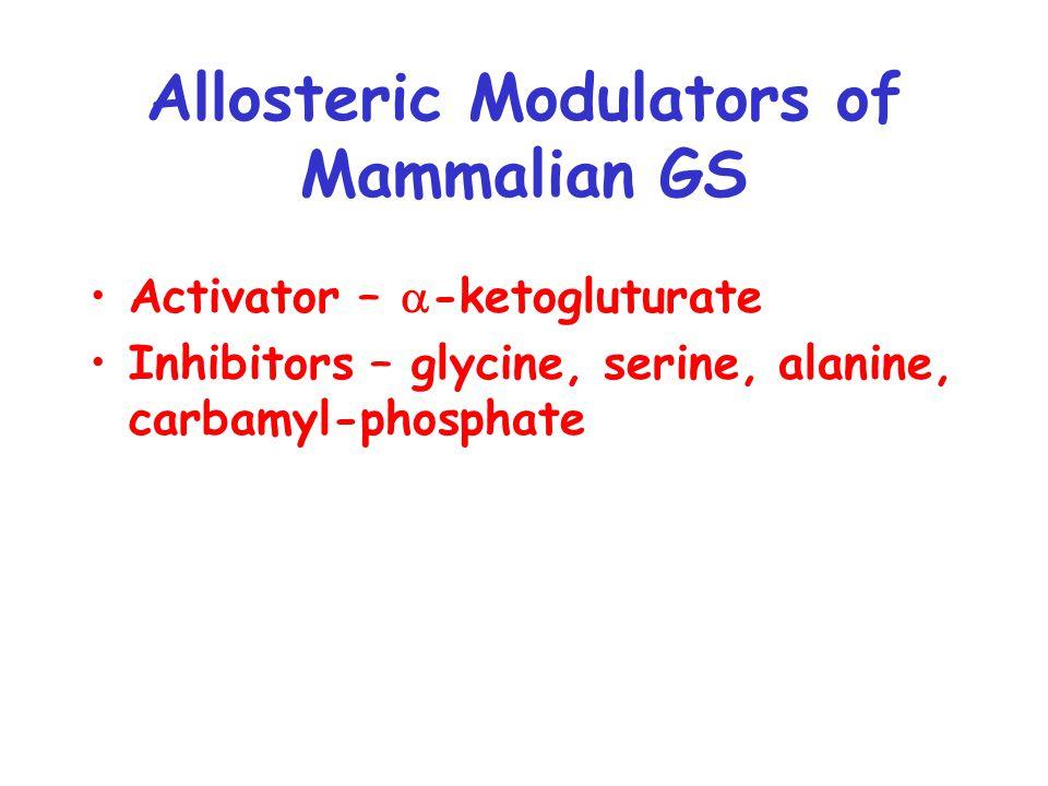 Allosteric Modulators of Mammalian GS Activator –  -ketogluturate Inhibitors – glycine, serine, alanine, carbamyl-phosphate