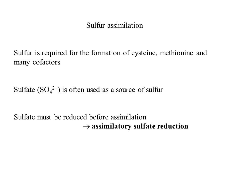 Sulfur assimilation Sulfur is required for the formation of cysteine, methionine and many cofactors Sulfate (SO 4 2  ) is often used as a source of sulfur Sulfate must be reduced before assimilation  assimilatory sulfate reduction