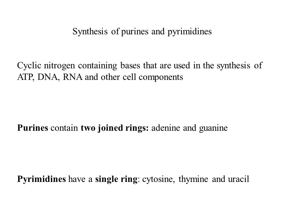 Synthesis of purines and pyrimidines Cyclic nitrogen containing bases that are used in the synthesis of ATP, DNA, RNA and other cell components Purines contain two joined rings: adenine and guanine Pyrimidines have a single ring: cytosine, thymine and uracil