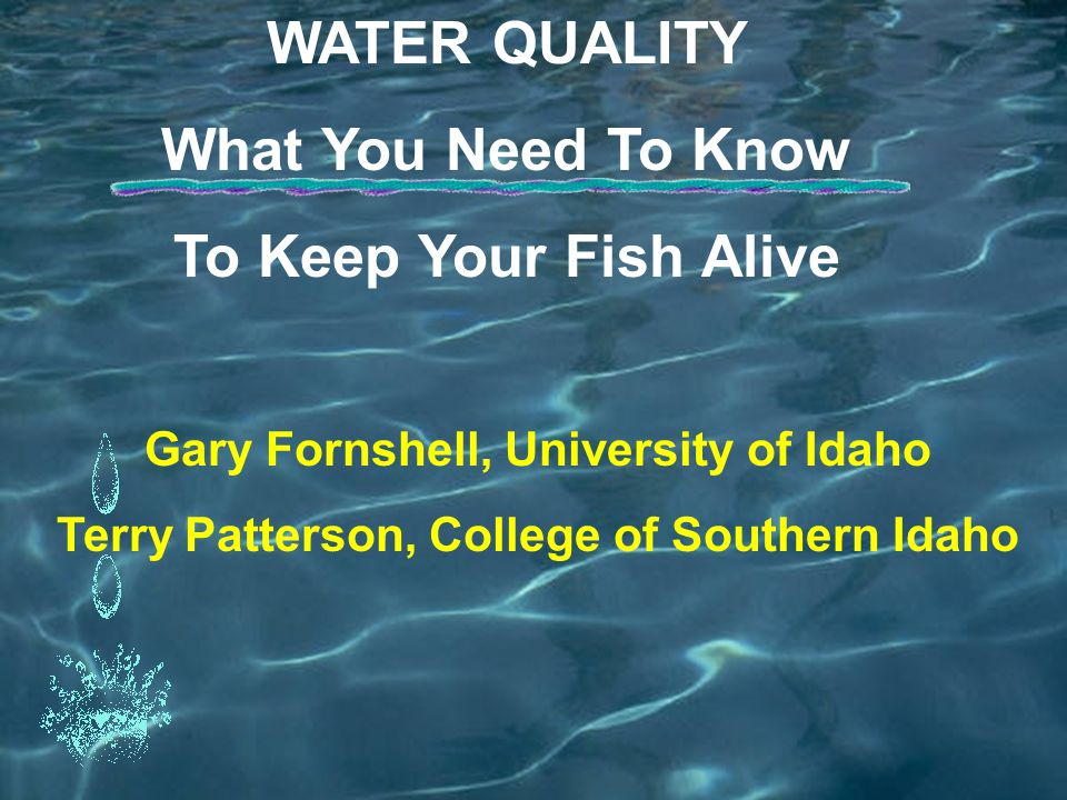 WATER QUALITY What You Need To Know To Keep Your Fish Alive Gary Fornshell, University of Idaho Terry Patterson, College of Southern Idaho