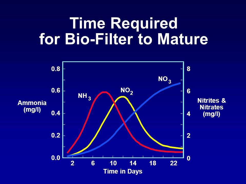 0.8 0.6 0.4 0.2 0.0 2610141822 8 6 4 2 0 Ammonia (mg/l) Nitrites & Nitrates (mg/l) NH NO 2 3 3 Time in Days Time Required for Bio-Filter to Mature