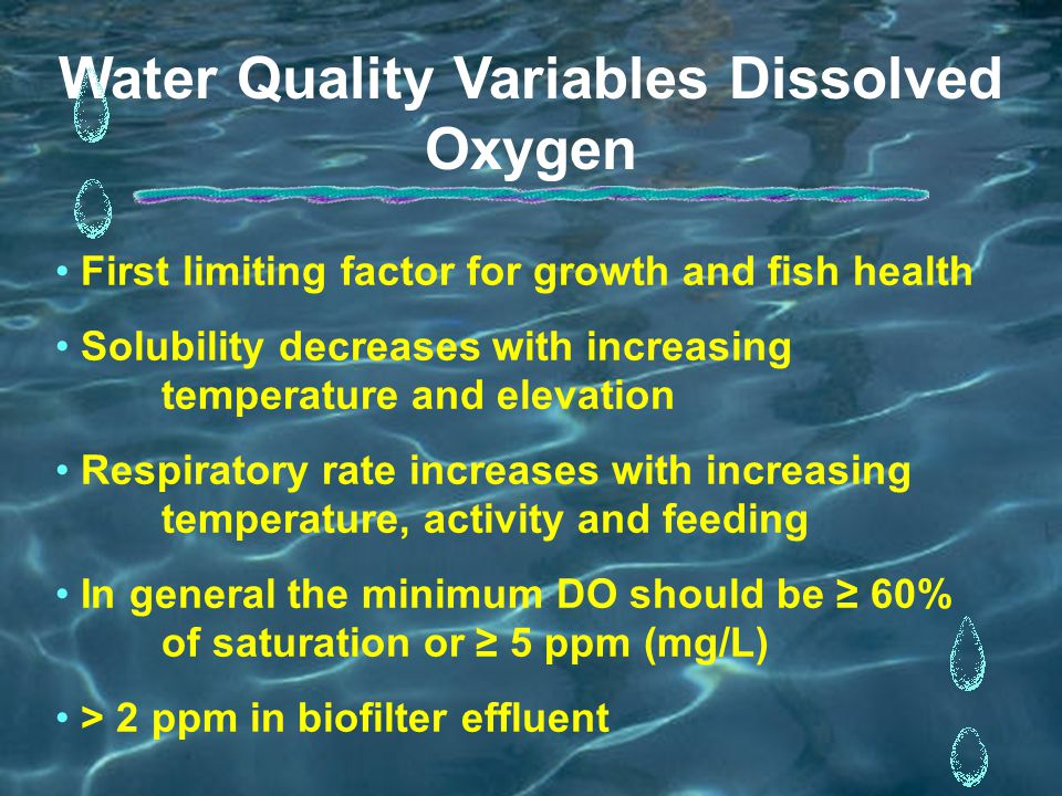 Water Quality Variables Dissolved Oxygen First limiting factor for growth and fish health Solubility decreases with increasing temperature and elevation Respiratory rate increases with increasing temperature, activity and feeding In general the minimum DO should be ≥ 60% of saturation or ≥ 5 ppm (mg/L) > 2 ppm in biofilter effluent