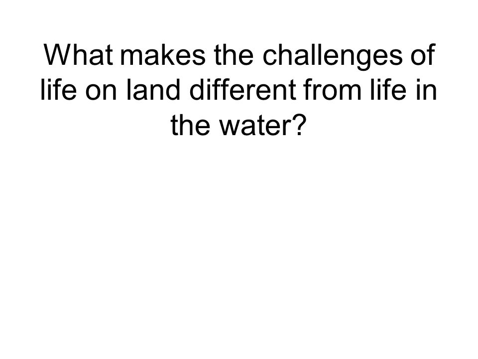 What makes the challenges of life on land different from life in the water?