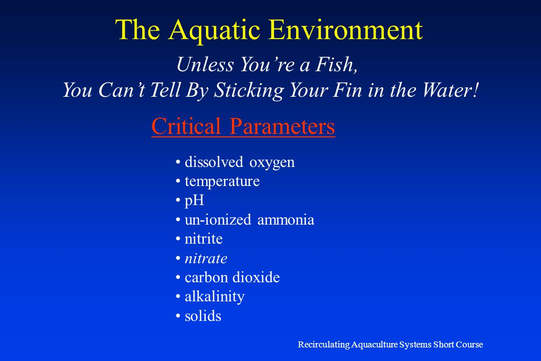 Recirculating Aquaculture Systems Short Course Water Quality James M. Ebeling, Ph.D. Research Engineer Aquaculture Systems Technologies, LLC New Orlea